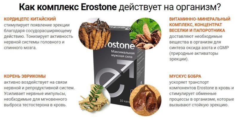 Как комплекс Eroston действует на организм